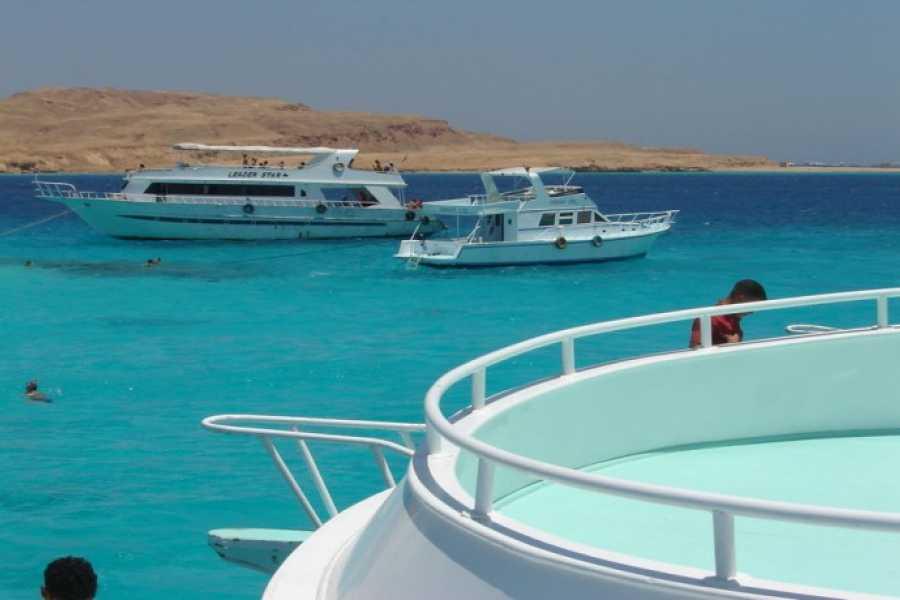 Excursies Egypte Excursion de plongée en apnée à Mahmya Island au départ d`EL Gouna