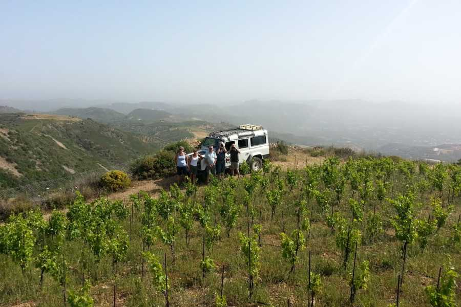 Destination Platanias Sunset Safari Tour with Wine tasting, 4-5 hours 72 EUR