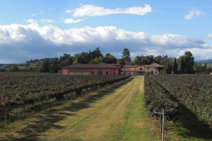 Enoteca Emilia Romagna VISIT AND WINE TASTING at Cleto Chiarli