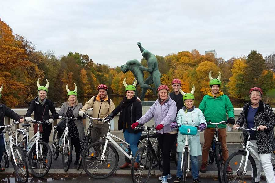 Viking Biking & Hiking Private bike tour (3 hours)