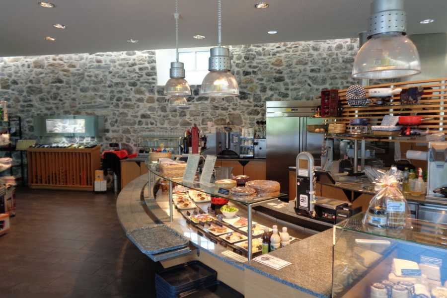 SwissTravelGuide Artisan Cheesemaking and Tasting