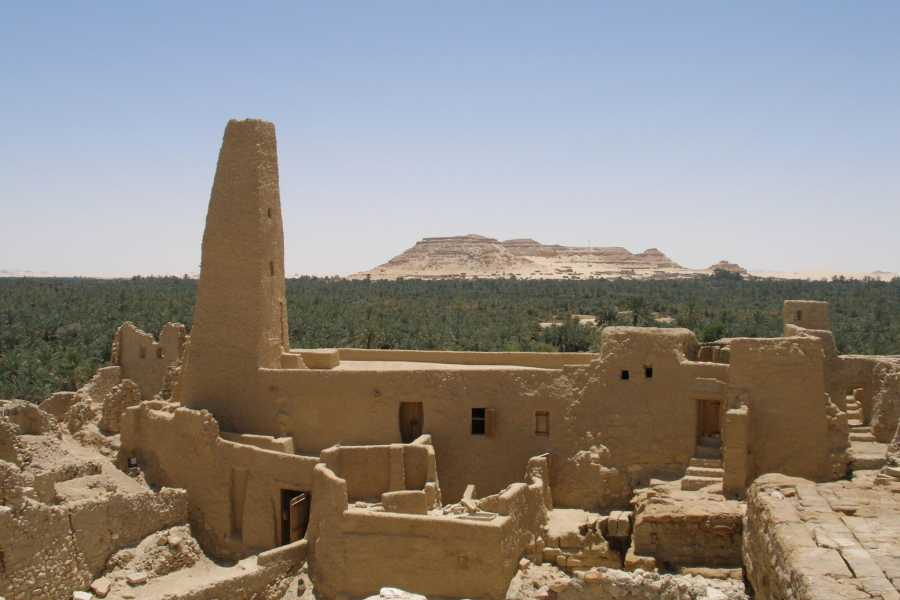 Marsa alam tours 4 days tour package to Siwa oasis from Cairo