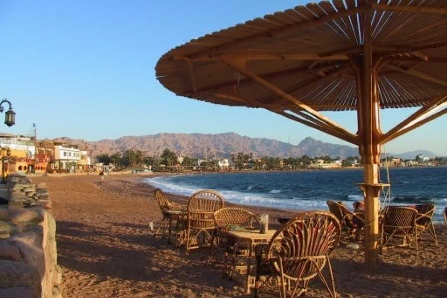 Marsa alam tours Private transfer from Cairo to El Gouna