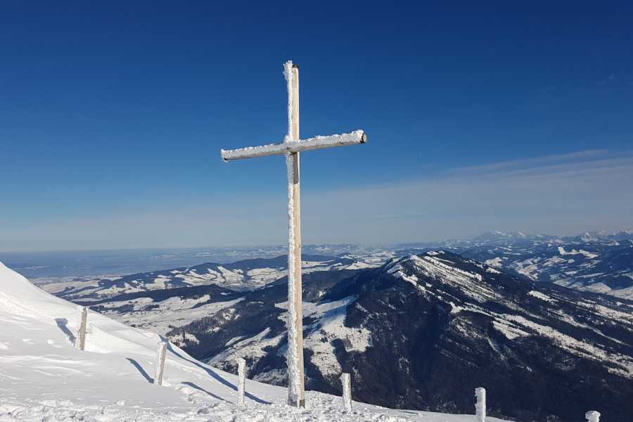 SwissTravelGuide Self-Guided Tour: Mount Rigi Round Trip with Cruise on Lake Lucerne