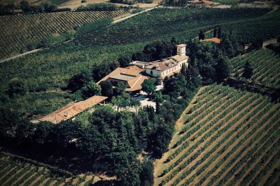 Enoteca Emilia Romagna Guided tour and wine tasting at Fattoria Paradiso