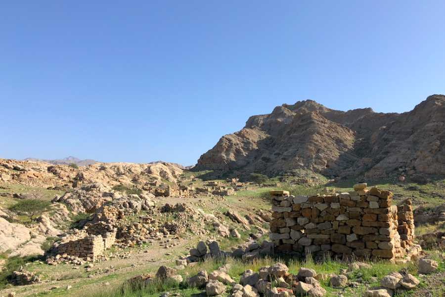 Adventurati Outdoor Family - Friendly Wadi Hike & Picnic - 4 Dec