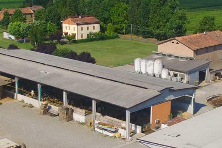 Modenatur In bici alla scoperta del territorio di Modena con visita al Caseificio