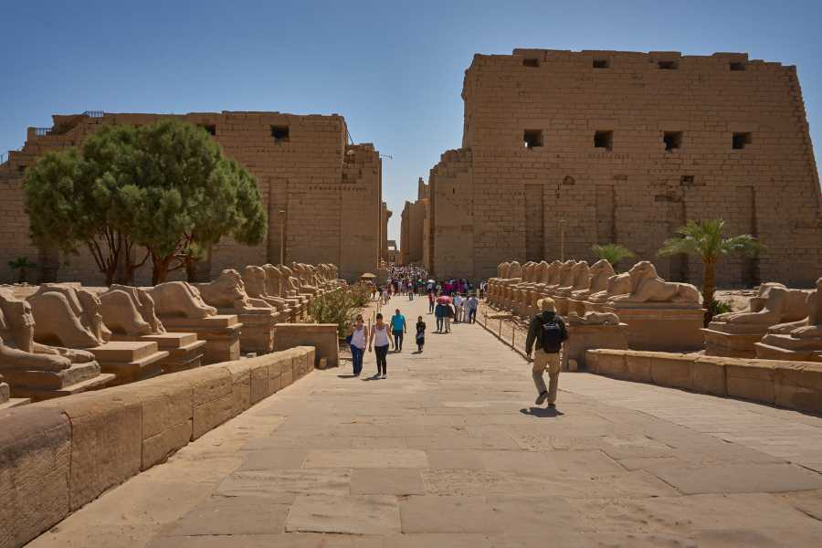 El Gouna Tours Luxor private day tour from El Gouna