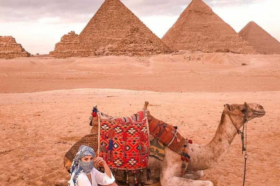 El Gouna Tours Day Trip to Cairo and the Pyramids from El Gouna by private car