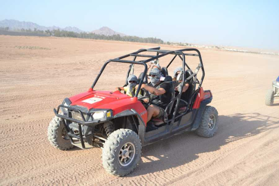 El Gouna Tours El Gouna Morning Car Buggy Excursions