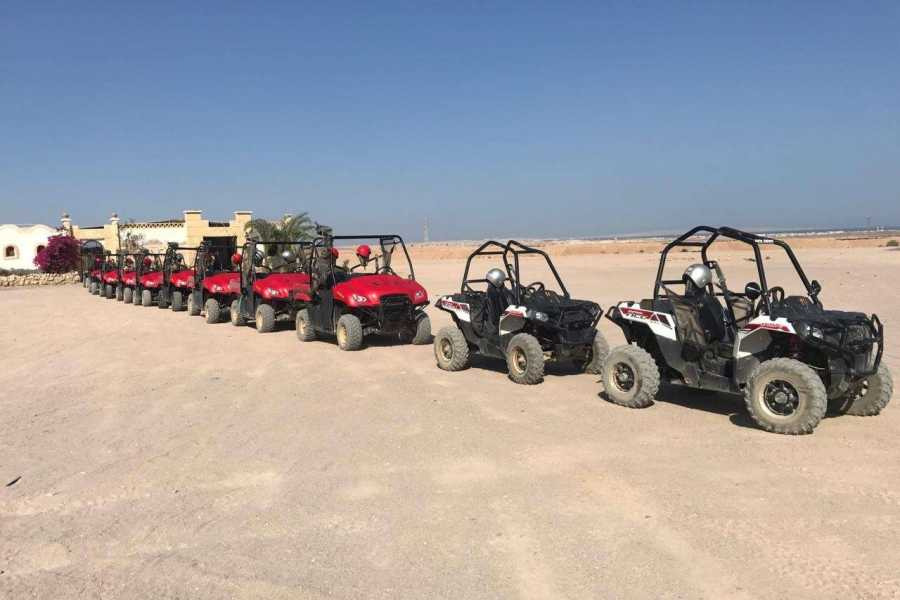 El Gouna Tours El Gouna Sunset  Car Buggy Excursions