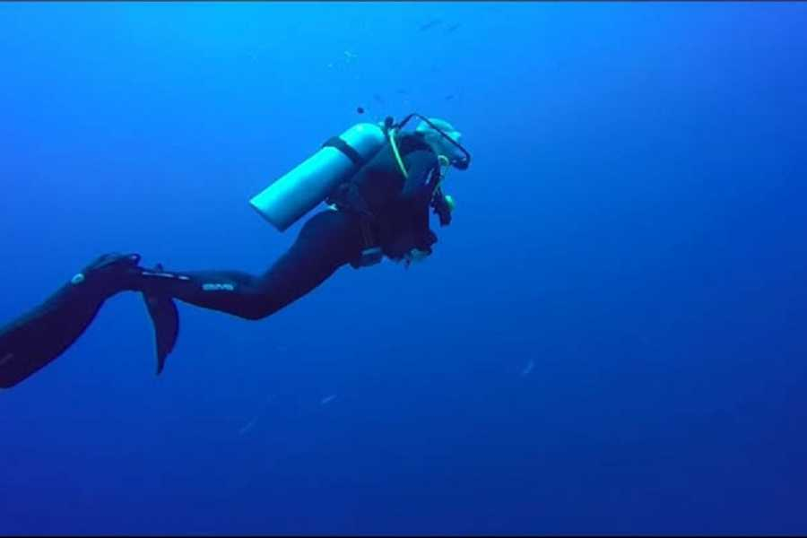 El Gouna Tours Day Scuba Diving Elgouna Egypt Red Sea