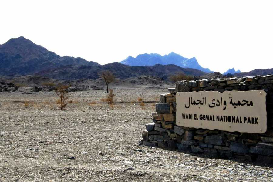 El Gouna Tours Wadi EL Gemal Excursions In Marsaalam
