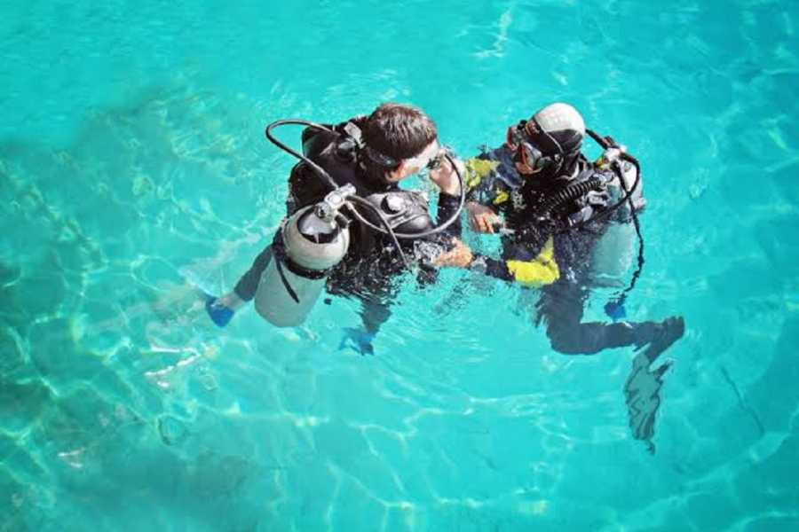 El Gouna Tours Port Galib Intro Diving Excursion From Marsaalam