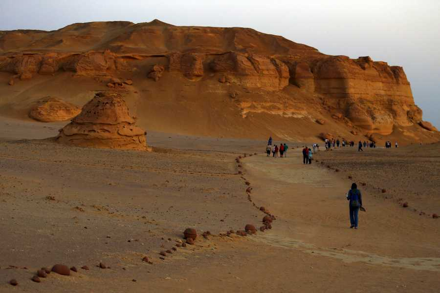 El Gouna Tours Wadi Al Hitan day trip from Cairo