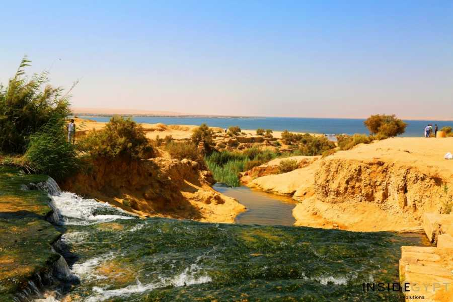 El Gouna Tours Day Excursion to Fayoum Oasis from Cairo