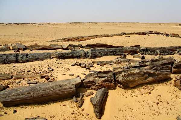 2 Days Excursion To El Fayoum And Wadi El Hitan From Cairo