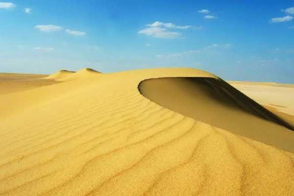 3 Days trip wadi el Hitan and Fayoum Oasis from Cairo