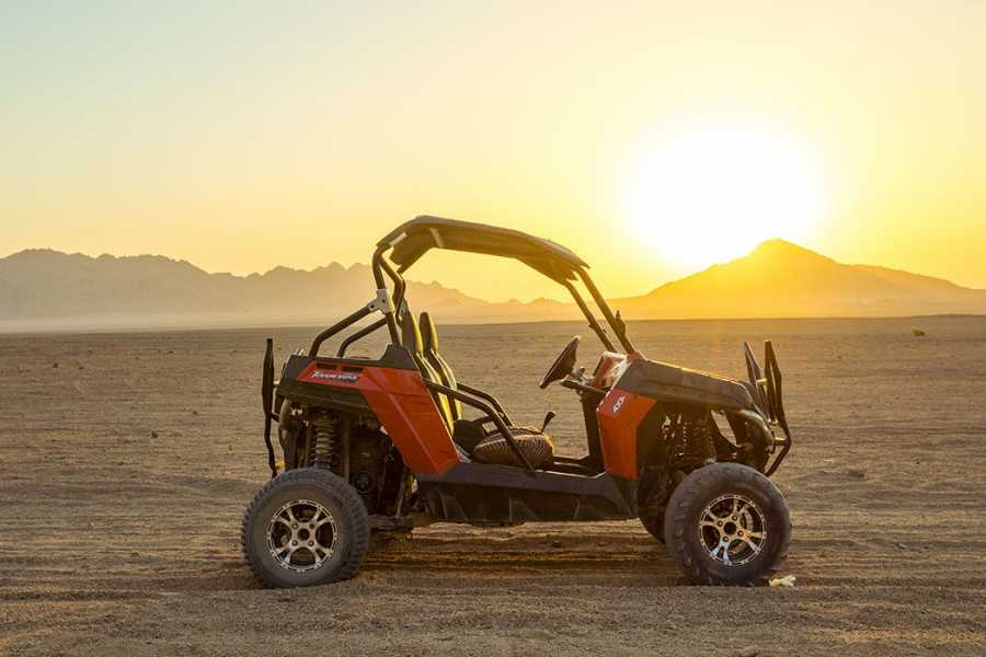 El Gouna Tours Sunset Car Buggy Excursion From Hurghada
