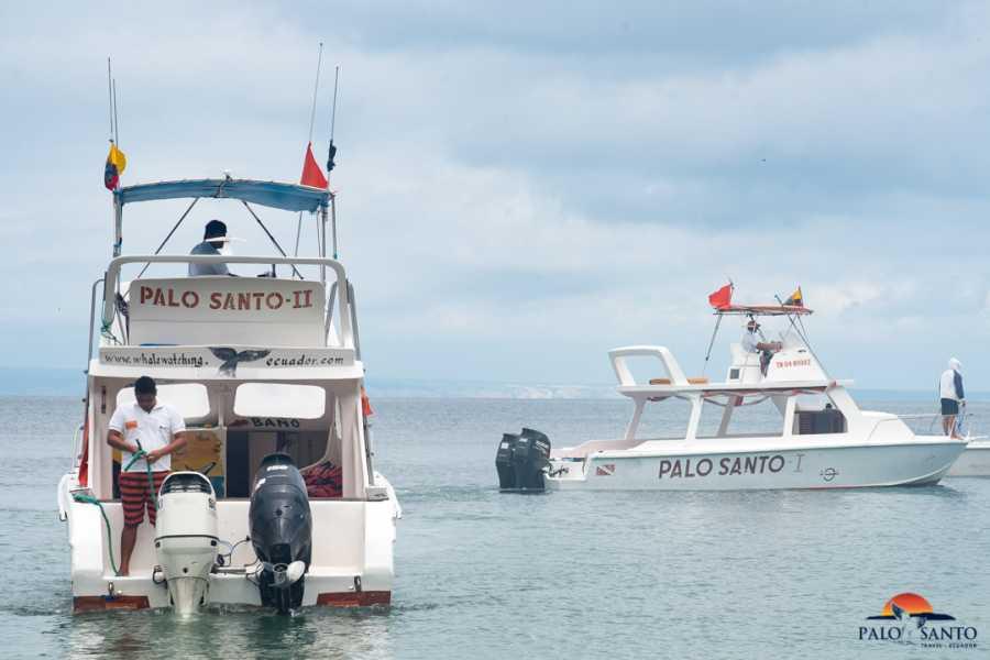 PALO SANTO TRAVEL MONTAÑITA | TOUR ISLA DE LA PLATA | WHALE WATCHING | ECUADOR