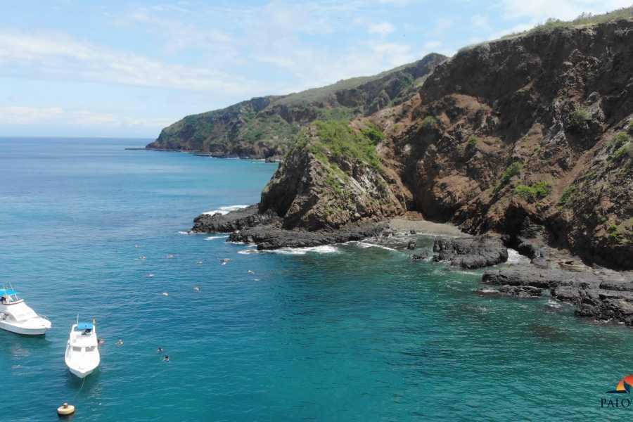 PALO SANTO TRAVEL MONTAÑITA | TOUR ISLA DE LA PLATA | OBSERVACION DE BALLENAS | ECUADOR