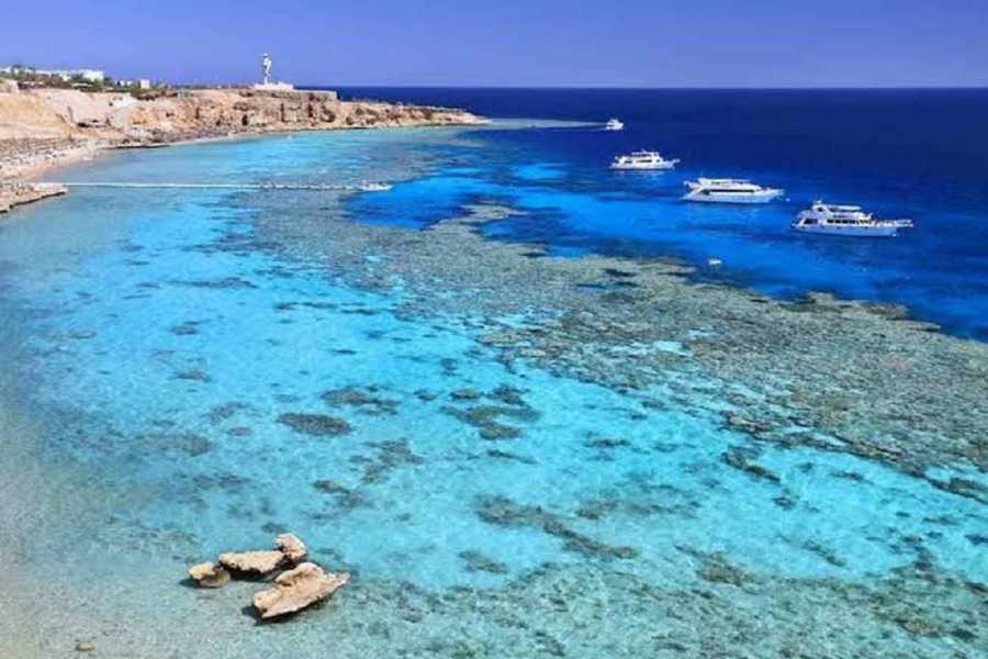 El Gouna Tours Snorkel Excursion in the Blue Hole with Camel ride from Sharm el Sheikh