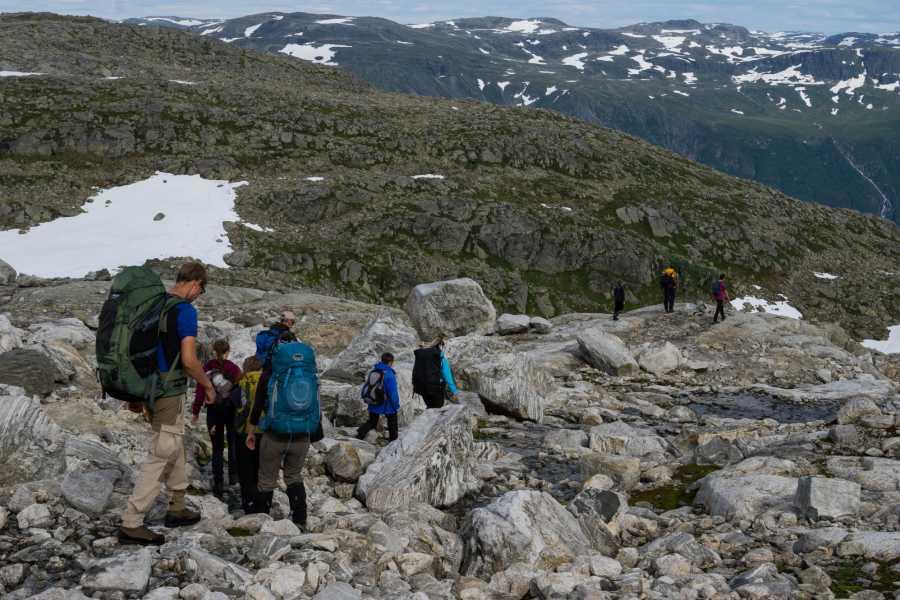 Folgefonni Breførarlag AS Glacier Crossing, 1 day