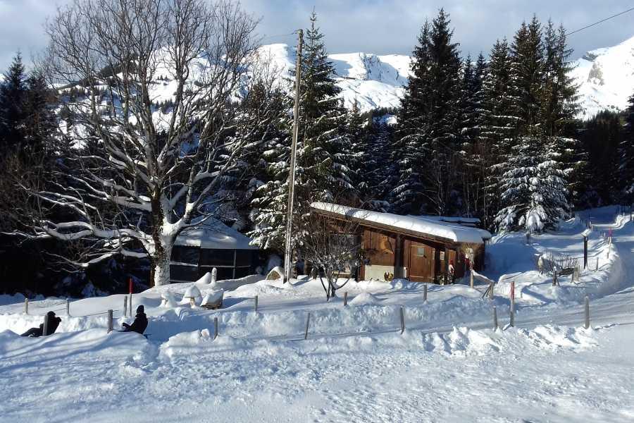 Outdoor Interlaken AG 雪鞋健行(Snowshoeing)