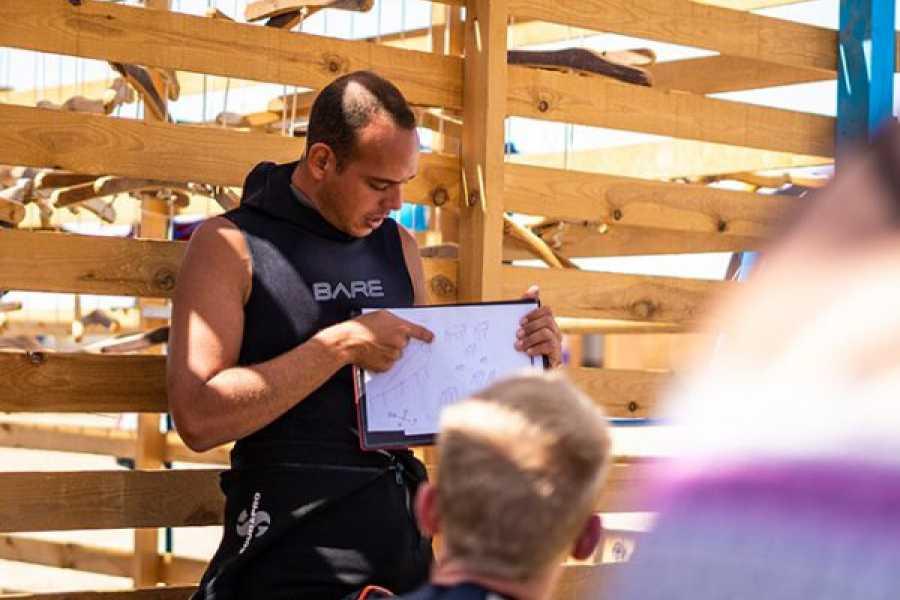 Marsa alam tours Diving tour in Abu Dabab from Marsa Alam