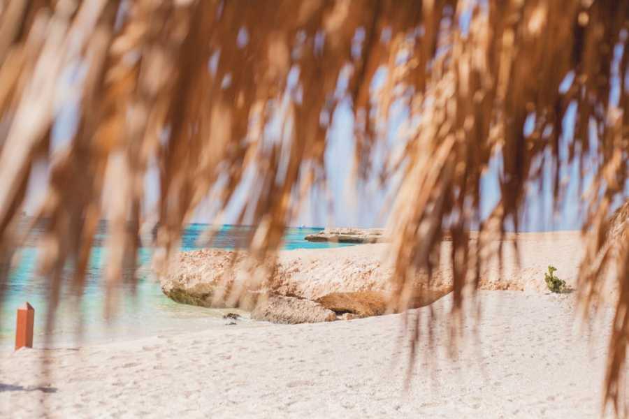 Marsa alam tours Paradise Island Snorkeling Trip from El Gouna