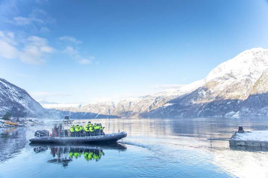 Hardanger Fjordsafari AS Bu i Kinsarvik. Sidertur på Hardangerfjorden