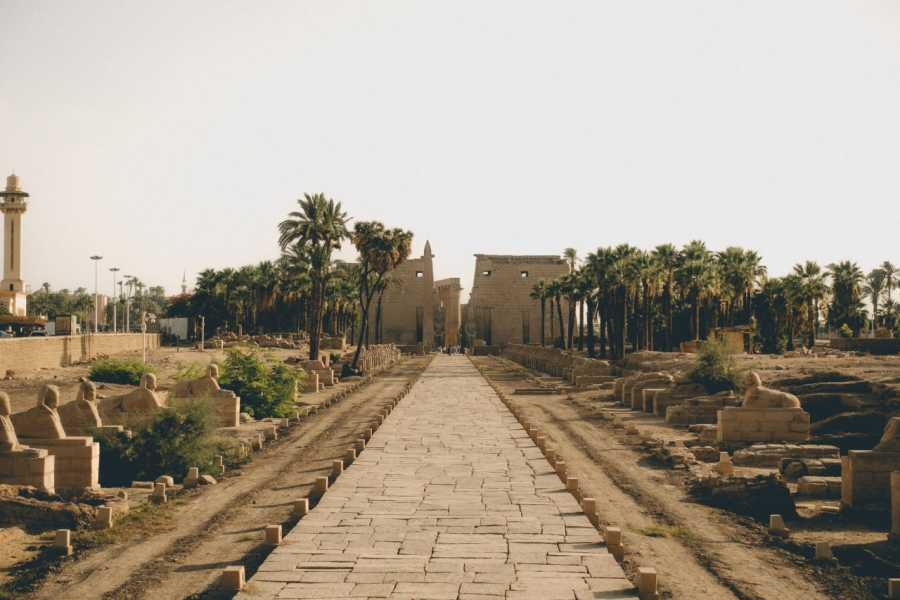 El Gouna Tours Marsa Alam Airport Transfers To Luxor Hotels