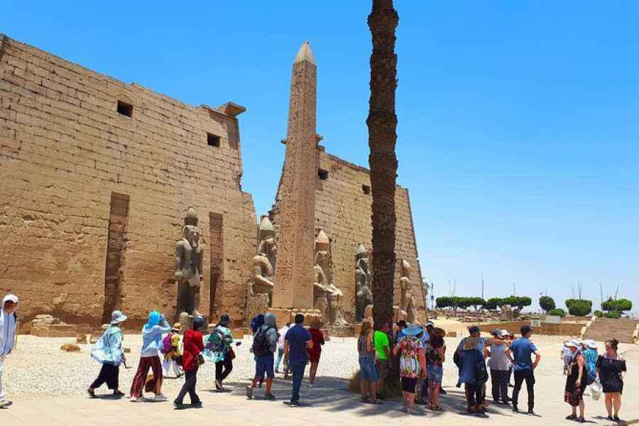 El Gouna Tours Aswan Airport Transfers To Luxor Hotels