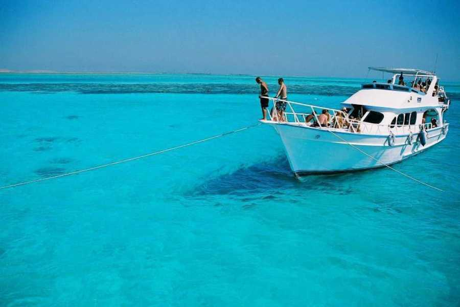 Daily tours Egypt Giftun Island snorkeling trip from Hurghada