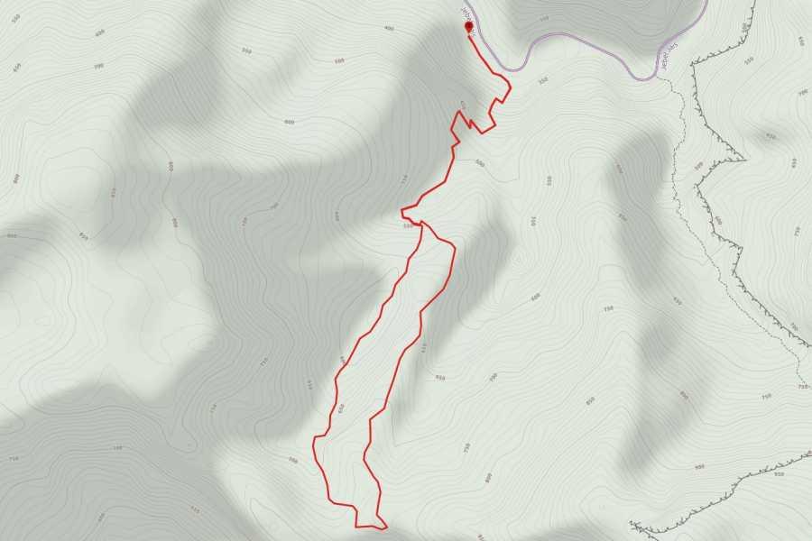 Absolute Adventure Athabat Ridgeline View Trek