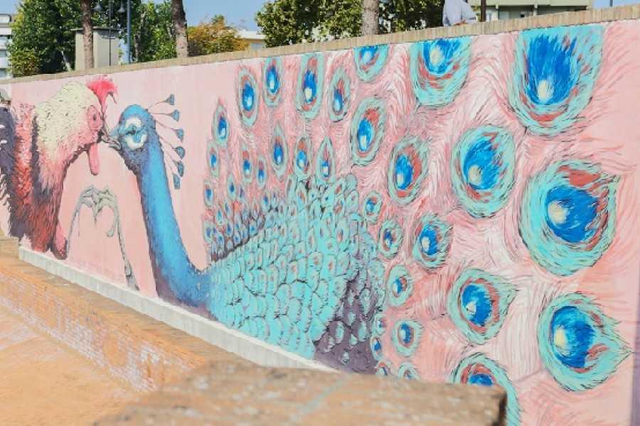 VisitRimini Rimini City Tour - Urban art