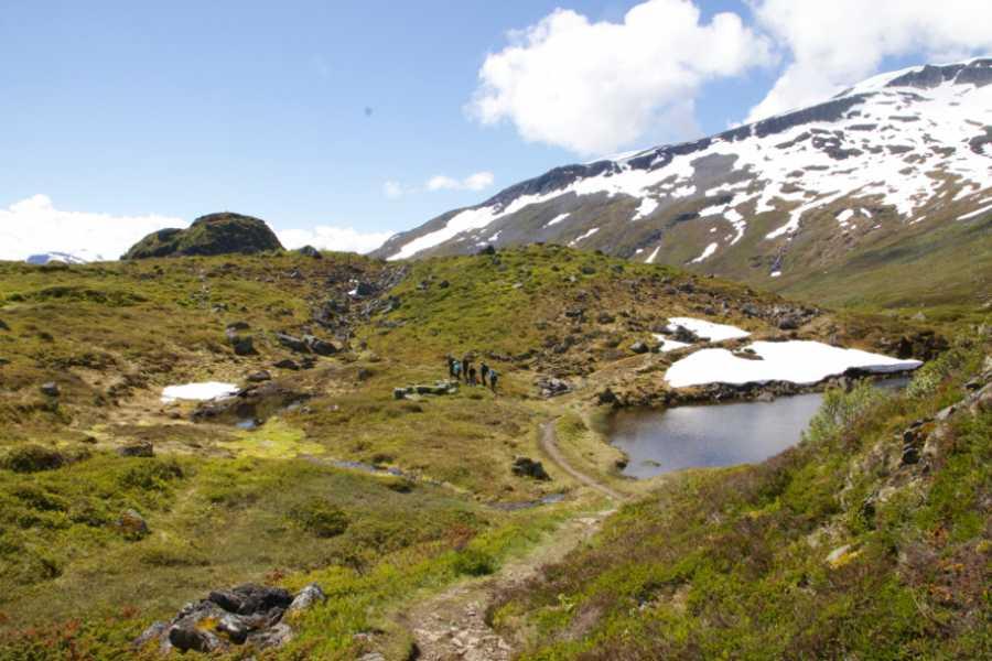 Travel like the locals (Møre og Romsdal) Trondhjemske postal route Herdalsbrekka - Ljøbrekka