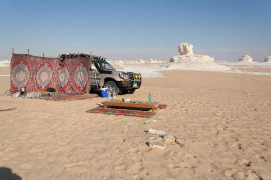 Daily tours Egypt Two days tour to white desert and Bahariya Oasis  from Cairo