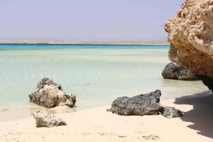 Daily tours Egypt Snorkeling Day tour to Sharm el Lulli and wadi El Qulaan
