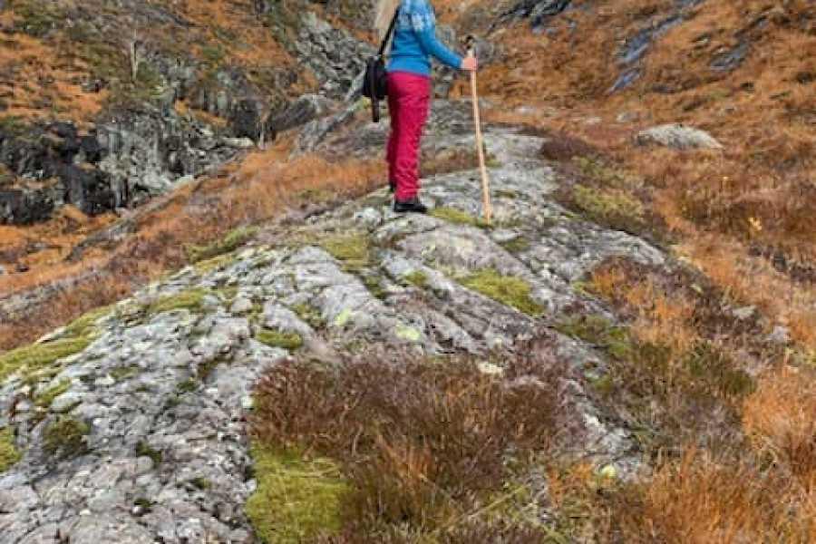 Åkrafjorden Oppleving AS Alvansnuten