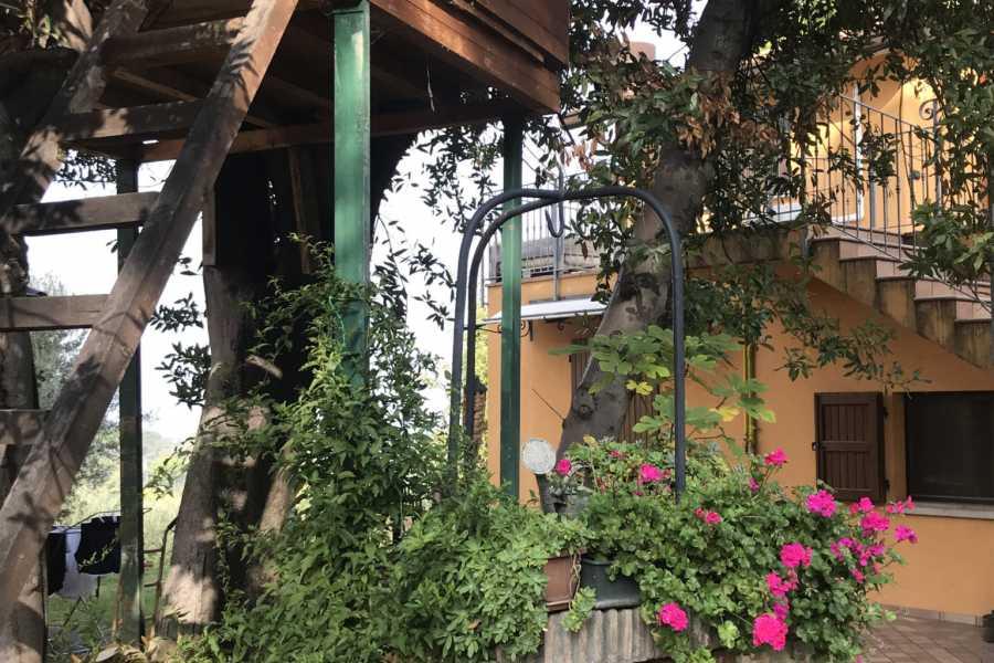 VisitRimini Olio...Storia di una famiglia