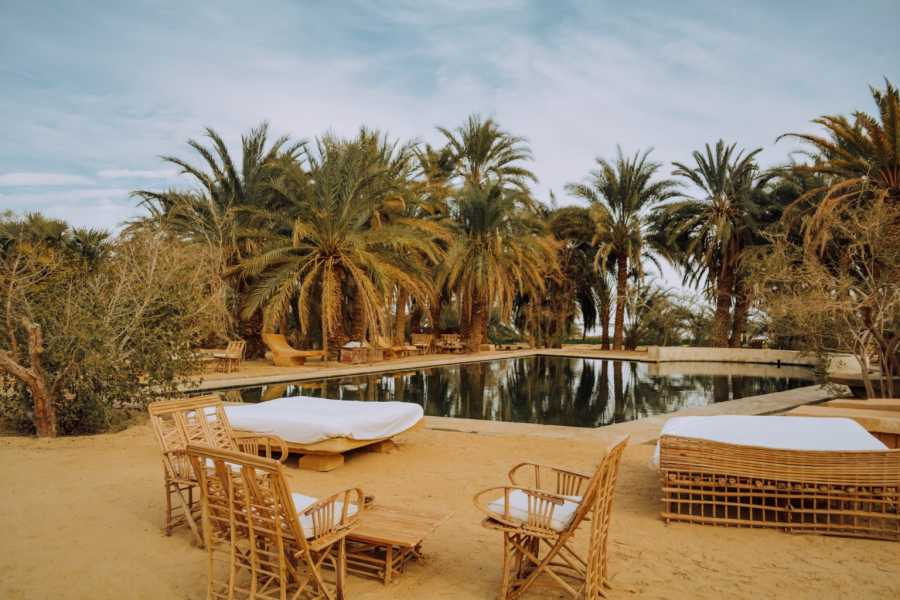 Marsa alam tours 4 days tour to Alexandria and Siwa oasis from Cairo
