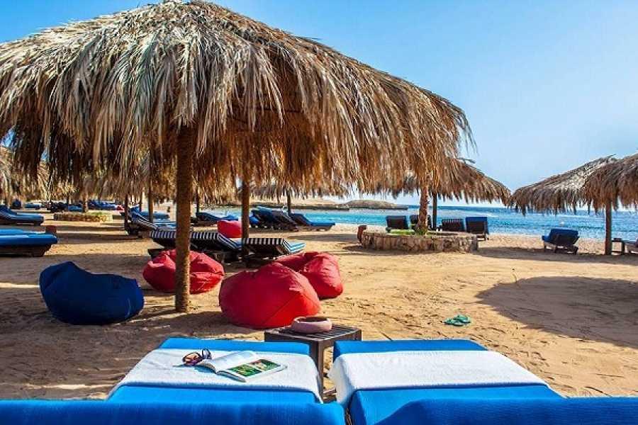 Daily tours Egypt Snorkeling Trip at Sharm El Naga From El Gouna