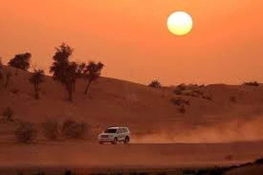 Daily tours Egypt Afternoon Quad Bike Safari Excursion from EL Gouna
