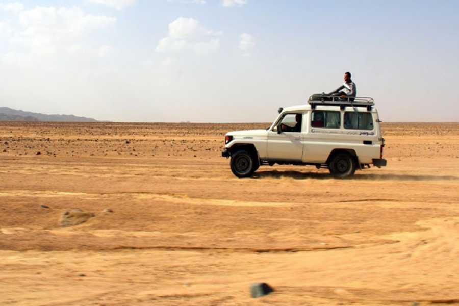 Daily tours Egypt Sunset Safari Trip from Sahl Hasheesh by Quad Biking