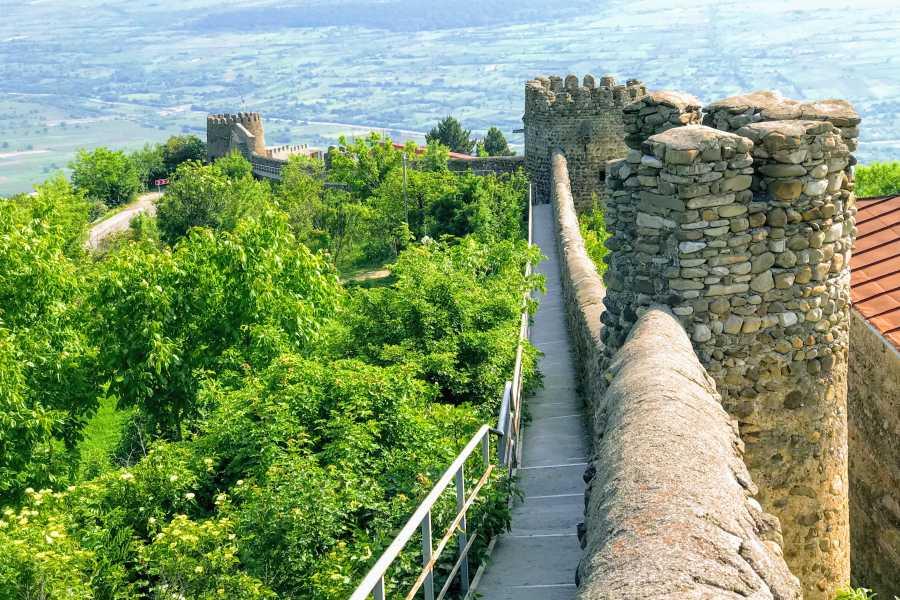 Friendly.ge Grand tour to Kakheti for wine lovers: Alaverdi-Telavi-Kvareli-Sighnaghi