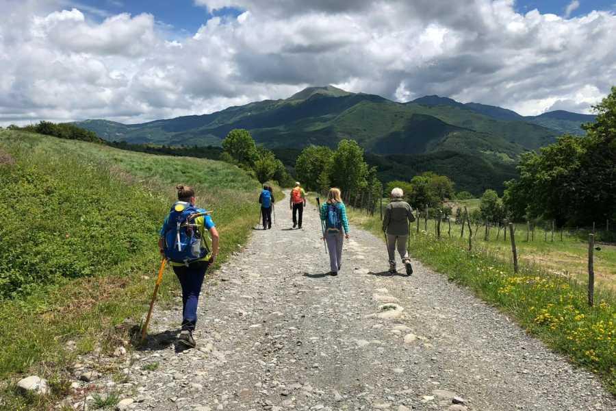 Modenatur Via Vandelli: Le piane di Mocogno - San Pellegrino in Alpe