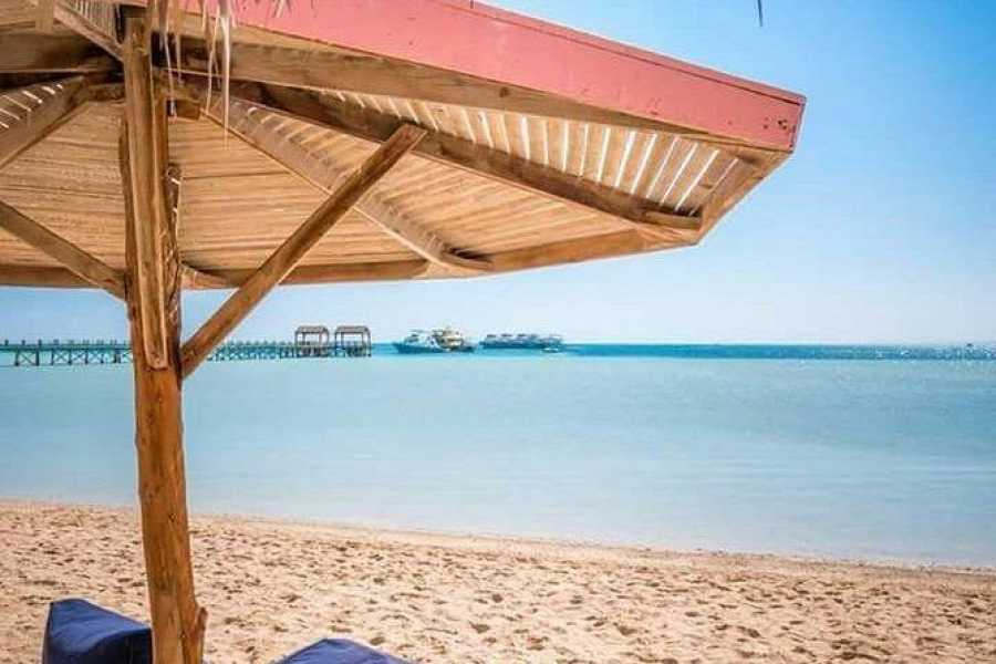 Daily tours Egypt Orange bay island snorkeling trip from Soma bay