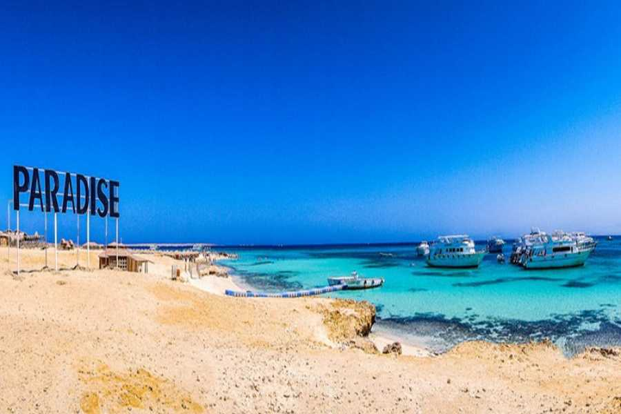Daily tours Egypt Snorkeling Day Trip Paradise Island From Soma Bay