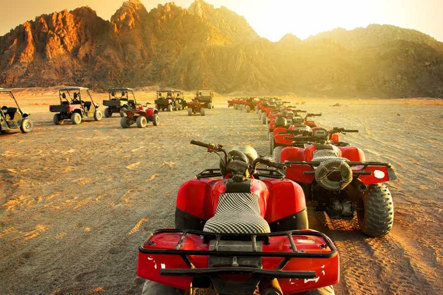 Daily tours Egypt Sunrise Quad biking safari tour from Soma Bay
